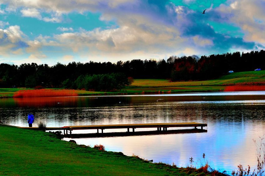 Beauty In Nature Cloud - Sky Clouds Clouds And Sky Colorful Colour Of Life Day Lake Nature No People Outdoors Pond Pond Life Reflection Scenics Sky Tranquil Scene Tranquility Tree Water Water Reflections Water_collection Waterfront Your Ticket To Europe