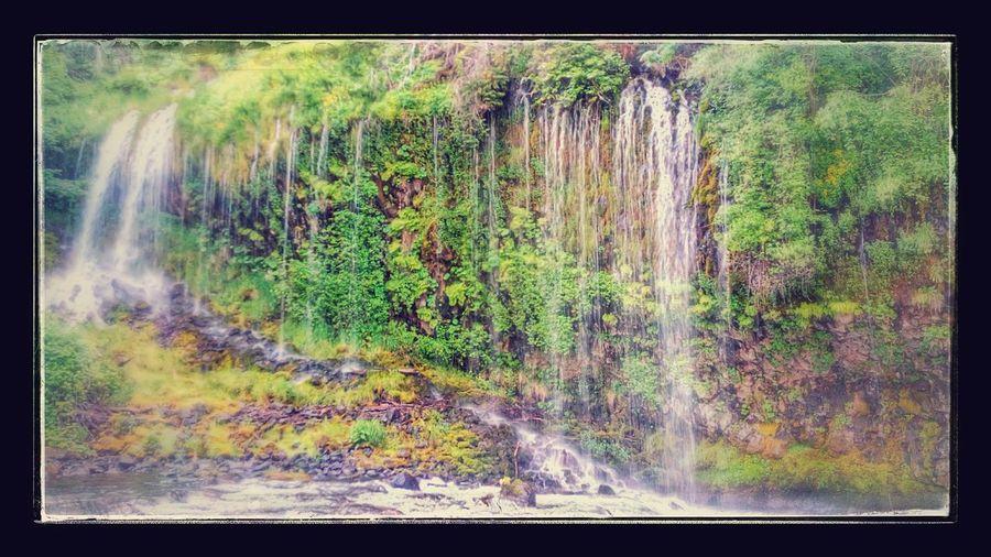 Moss Brae Falls Waterfall