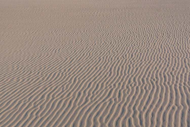 Natural textures found in the national park in the north of Brazil - Lencois Maranhenses. Arid Climate Backgrounds Day Desert Dune Full Frame Ground Lines Lines And Shapes Minimal Minimalism Nature No People Outdoors Pattern Rippled Sand Sand Dune Simplicity Texture Textured  Textures And Surfaces Travel Wave Pattern Waves The Great Outdoors - 2017 EyeEm Awards EyeEmNewHere EyeEm Selects