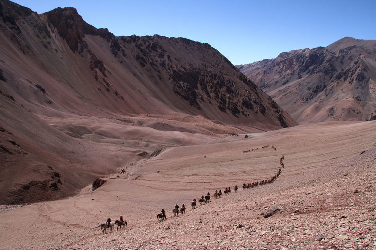 High angle view of people riding horses on mountain