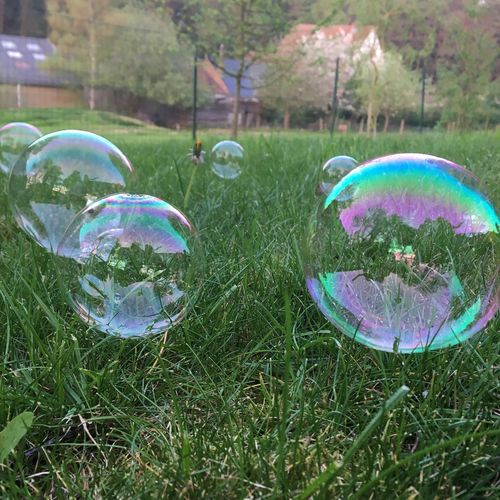 Close-up of bubbles on grass in field