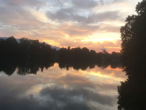 Tree Reflection Sunset Beauty In Nature Sky Water Tranquil Scene Cloud - Sky Nature Scenics Tranquility No People Outdoors Silhouette Lake Waterfront Day River Aare