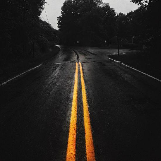 Road Road Marking The Way Forward Transportation Tree Asphalt Outdoors Day No People Nature Sky