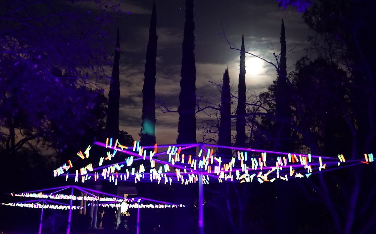 night, illuminated, decoration, lighting equipment, celebration, event, glowing, performance, arts culture and entertainment, light, light - natural phenomenon, nature, reflection, water, nightlife, multi colored, architecture, tree, outdoors, purple, stage light