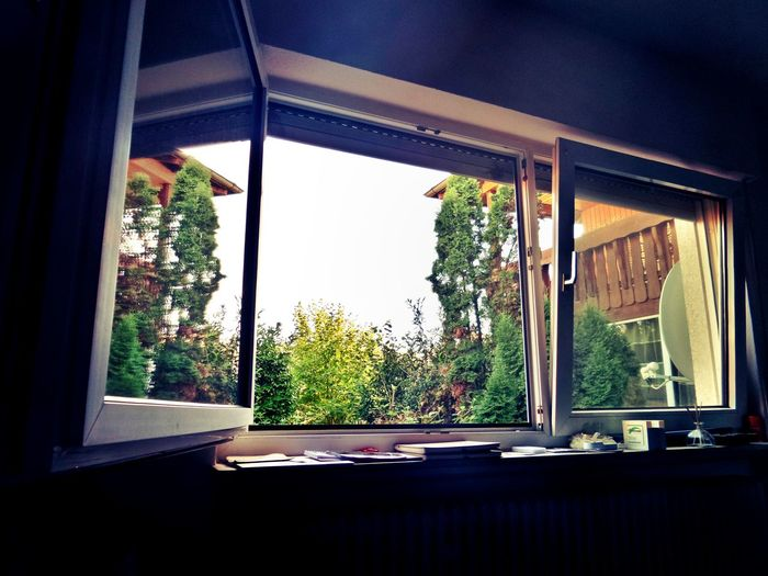 Inside Looking Out View Through My Window Window Window Reflections Indoors  Low Angle View Nature Outside Indoors  Summertime Sunny Day No People Day Sky Tree Close-up In The Garden Perspective Germany🇩🇪 Mix Yourself A Good Time The Week On EyeEm