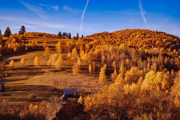 Beautiful autumn landscapes in the romanian mountains, sibiu county, cindrel mountains, romania