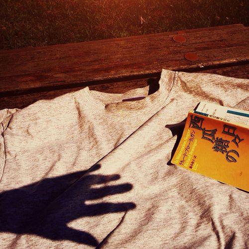 Day Sun Book In Watermelon Sugar Richardbrautigan 🎶Flipper's Guitar - Aquamarine