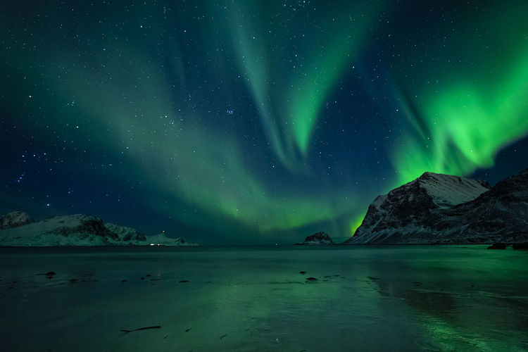Amazing clear night sky with aurora borealis over a beach with reflections, lofoten, norway