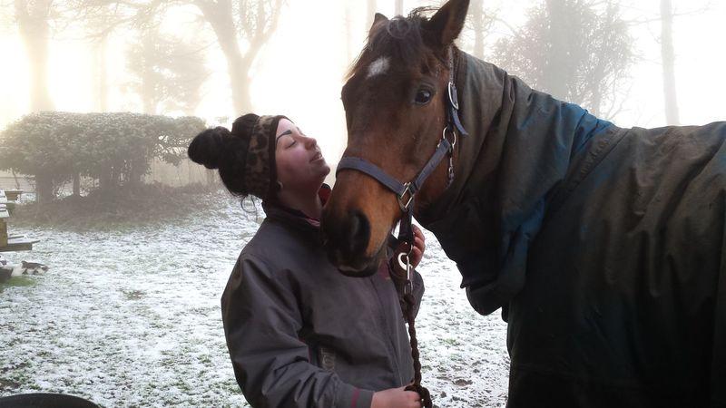 Georgia and Murphy. Equine Horses Animals Winter Thoroughbred
