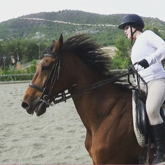 Galopar sin estribos contigo es lo mejor! Horse BIGLOVE Bighorse Horsestagram Horsefollowers Loveit Animallovers Equinephotography Equipe Equine