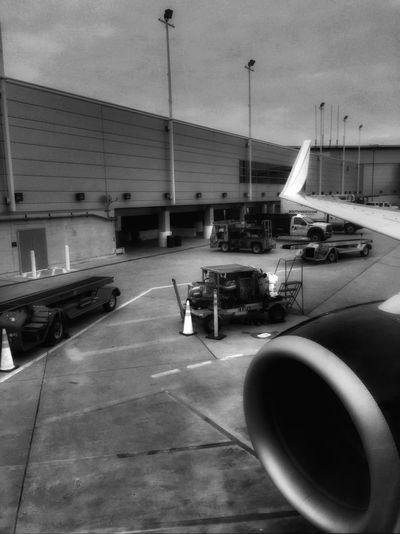 Airport NEM Submissions NEM Mind NEM GoodKarma EyeEm Best Edits NEM Mood EE_Daily: Black And White Chicago NEM Black&white