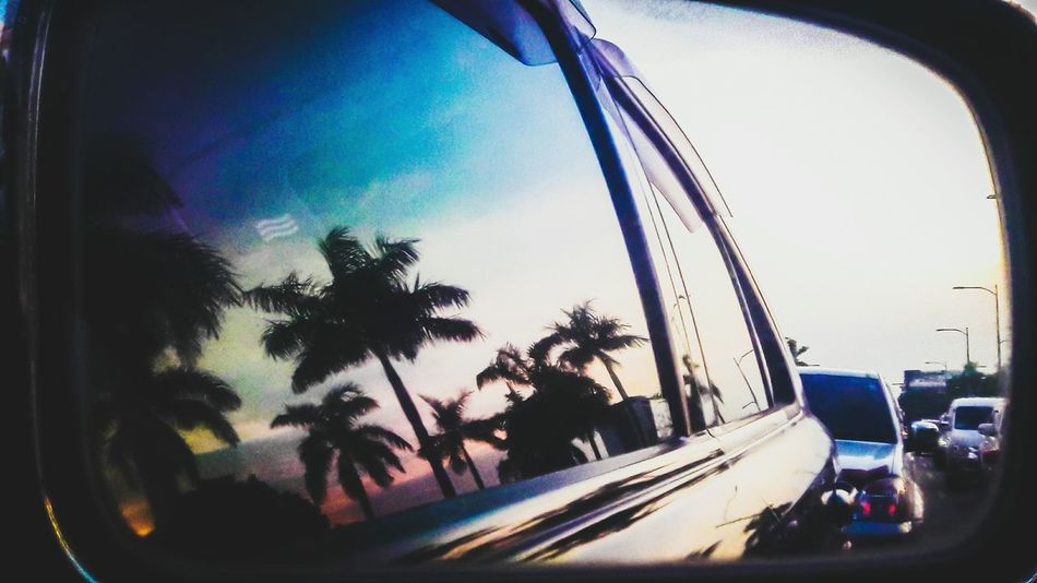 Summer Traffic Roxas Boulevard Dusk By The Bay Palm Tree Reflection Blue Sky Car Window Reflection Cool NewEyeEmPhotographer City Water Car Land Vehicle Tree Sky Architecture Windshield Rainy Season Silhouette Side-view Mirror