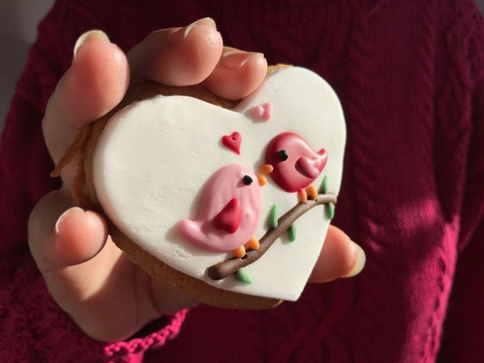 Woman holding a gingerbread cookie with love bird icing, a valentine day treat.