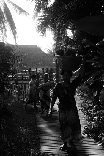 bali april 2018 Bali Copy Space Fine Art Photography INDONESIA Traditional Clothing Travel Photography Wanderlust Balinese Culture Black And White Car Casual Clothing Holding Leisure Activity Lifestyles Monochrome Nature Plant Real People Southeast Asia Street Photography Women