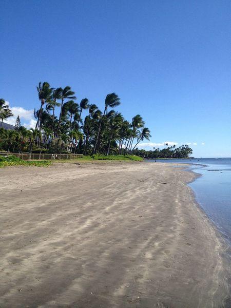 Enjoying Life BeachOcean Nature