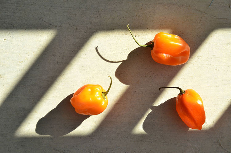 habanero peppers Close-up Day Food Food And Drink Freshness Habanero Peppers Healthy Eating High Angle View Indoors  No People Peppers Shadow Sunlight Sunlight And Shadow Table