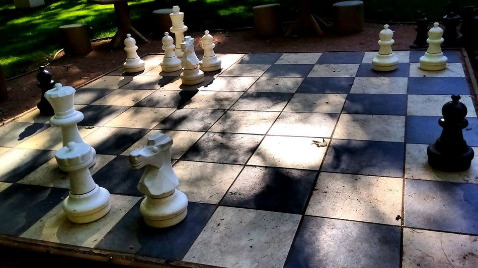 Chess Chess Piece Chess Board High Angle View Day Outdoors Strategy Pawn - Chess Piece Leisure Games No People Tree Knight - Chess Piece Close-up The Week On EyeEem