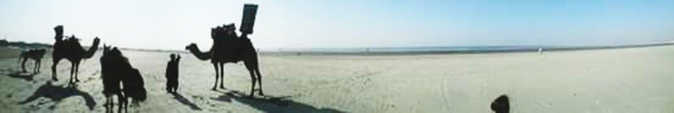 Seaside Rides Sand Fun