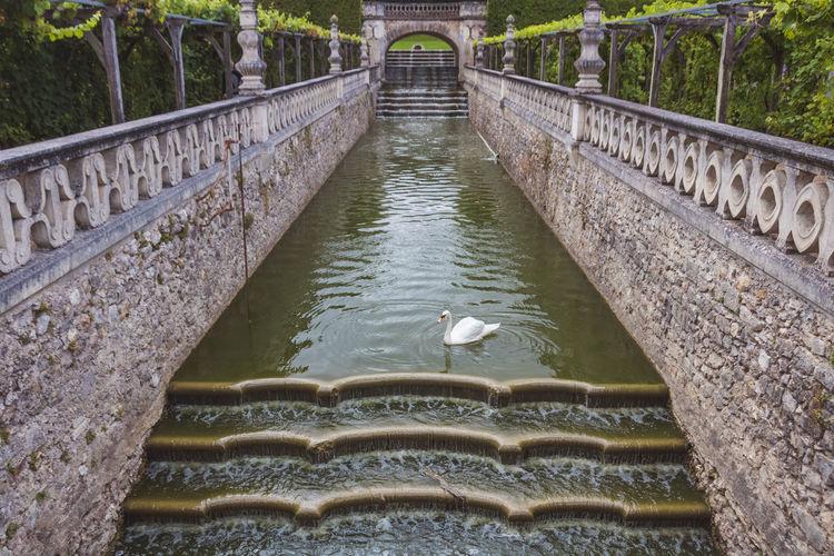 View of birds on bridge over lake