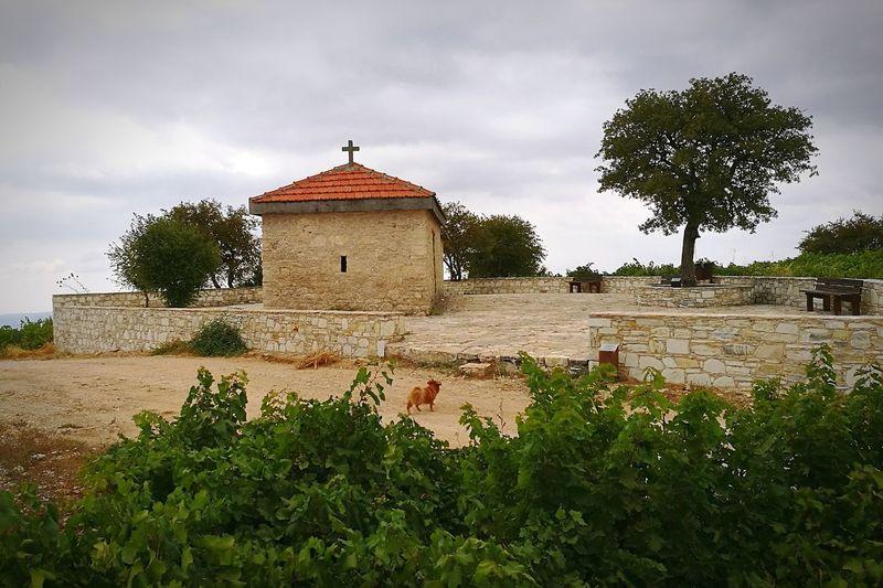Panayia, Cyprus