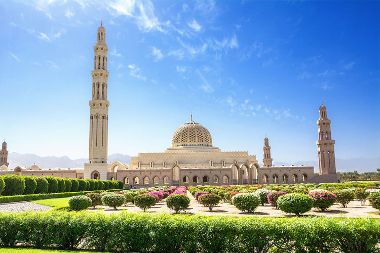 Garden by mosque in city against blue sky