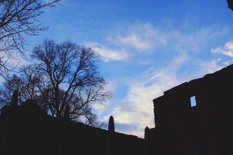 Architecture Built Structure Sky Low Angle View Building Exterior Cloud - Sky Silhouette No People Tree Day Outdoors Bare Tree Nature City