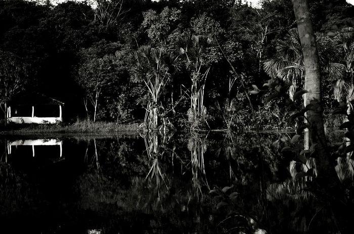 Pb Pretoebranco Bw Blackandwhite Nature Sitio Lake Espelho Espelhado Nikon