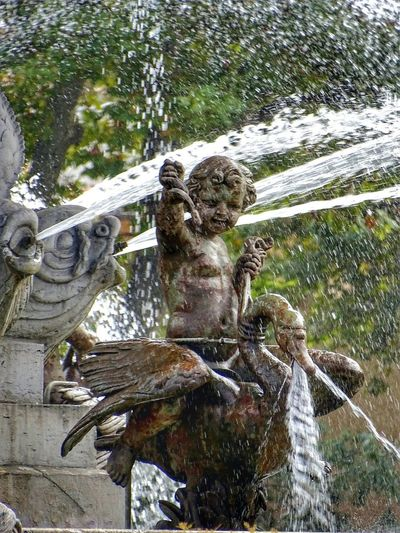 Water Day Nature No People Outdoors Animal Themes Tree Mammal Provence Alpes Cote D'azur EyeEm Gallery EyeEm Best Shots Photooftheday SONY DSC-HX400V Travel Destinations Aix-en-Provence Fountain Statue
