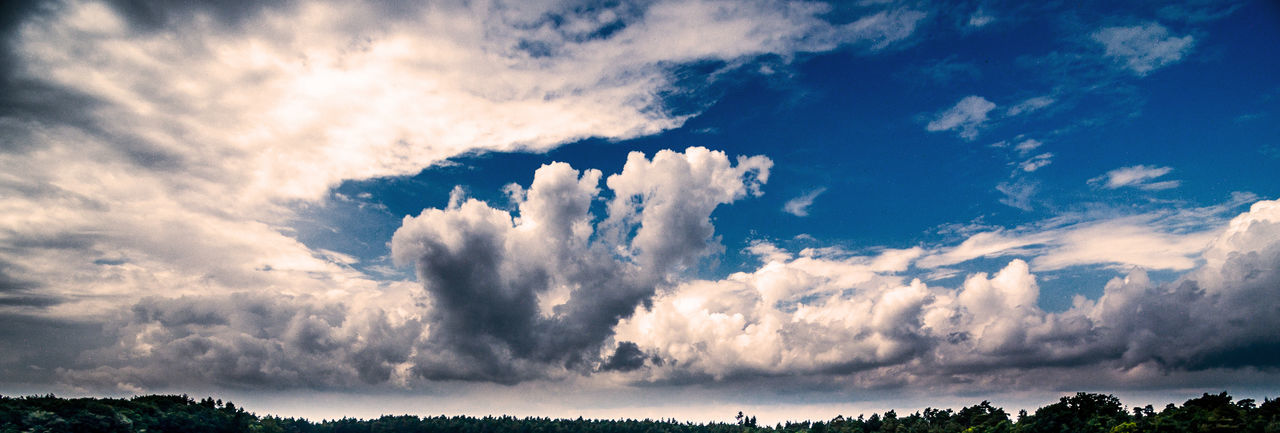 Panoramic view of the dramatic cloudy sky above a forest Aerial Shot Dramatic Sky Drone  Panorama Aerial Aerial Photography Aerial View Beauty In Nature Blue Blue Sky Cloud - Sky Clouds Day Dramatic Dronephotography Droneshot Nature No People Outdoors Scenics Sky Tranquil Scene Tranquility Tree White