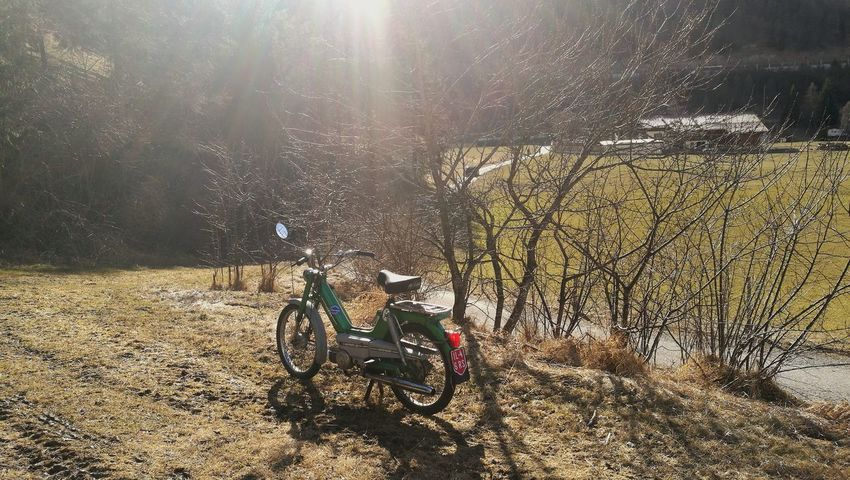 Nearly Spring Summer Is Coming Sunny Day Nice Weather Biker Life Nature