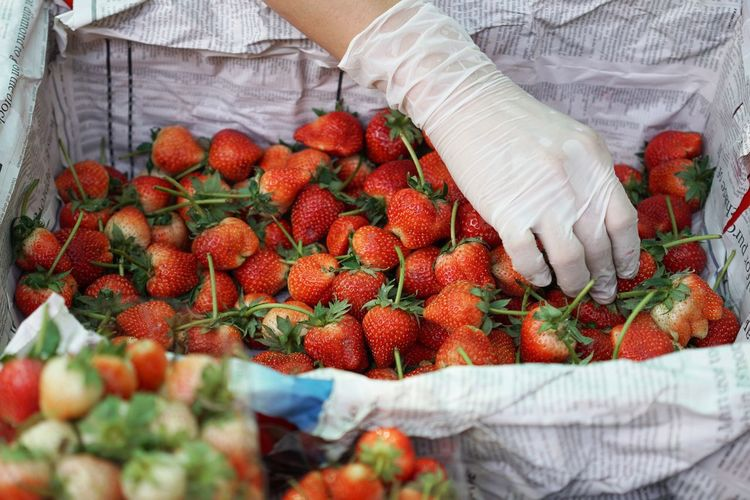 Cropped image of woman holding strawberry in basket