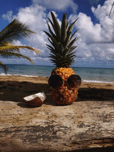 Pineapple Fruit Beach Sea No People Palm Tree Outdoors Beauty In Nature Sky Close-up Day EyeEmNewHere The Great Outdoors - 2017 EyeEm Awards BYOPaper!