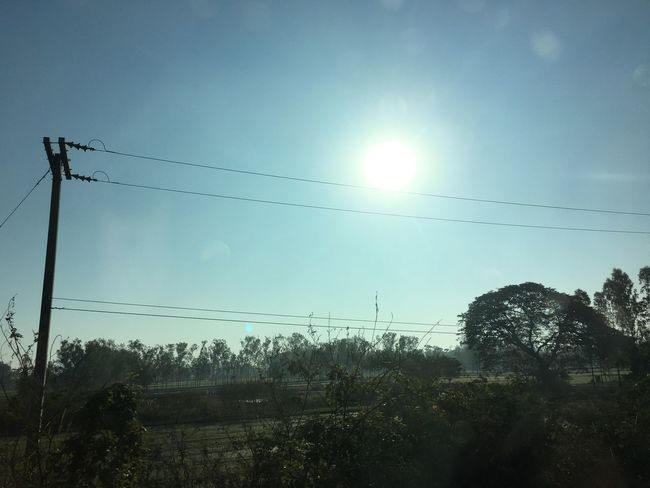 Cable Power Line  Electricity  Power Supply Electricity Pylon Connection Tree