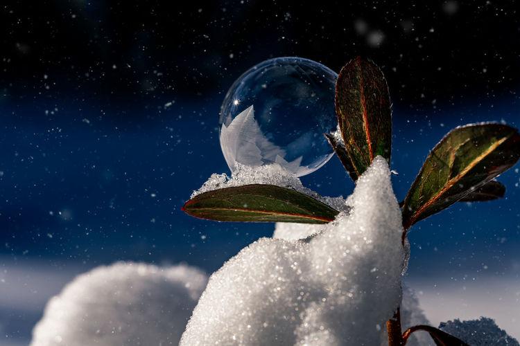 Frozen soap