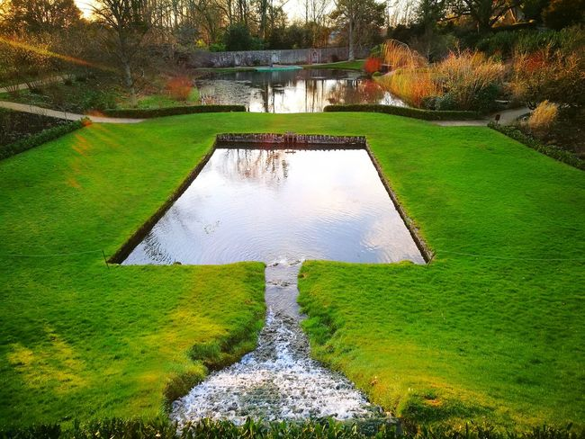 Winter Colour Landscaping Garden Design Public Garden Formal Garden Garden Pond Water Feature Garden Water Feature Man Made Lake Man Made Landscape Waterfall Sunset On Water Perennial Borders Winter Trees Water Green Color High Angle View Day Outdoors No People Grass