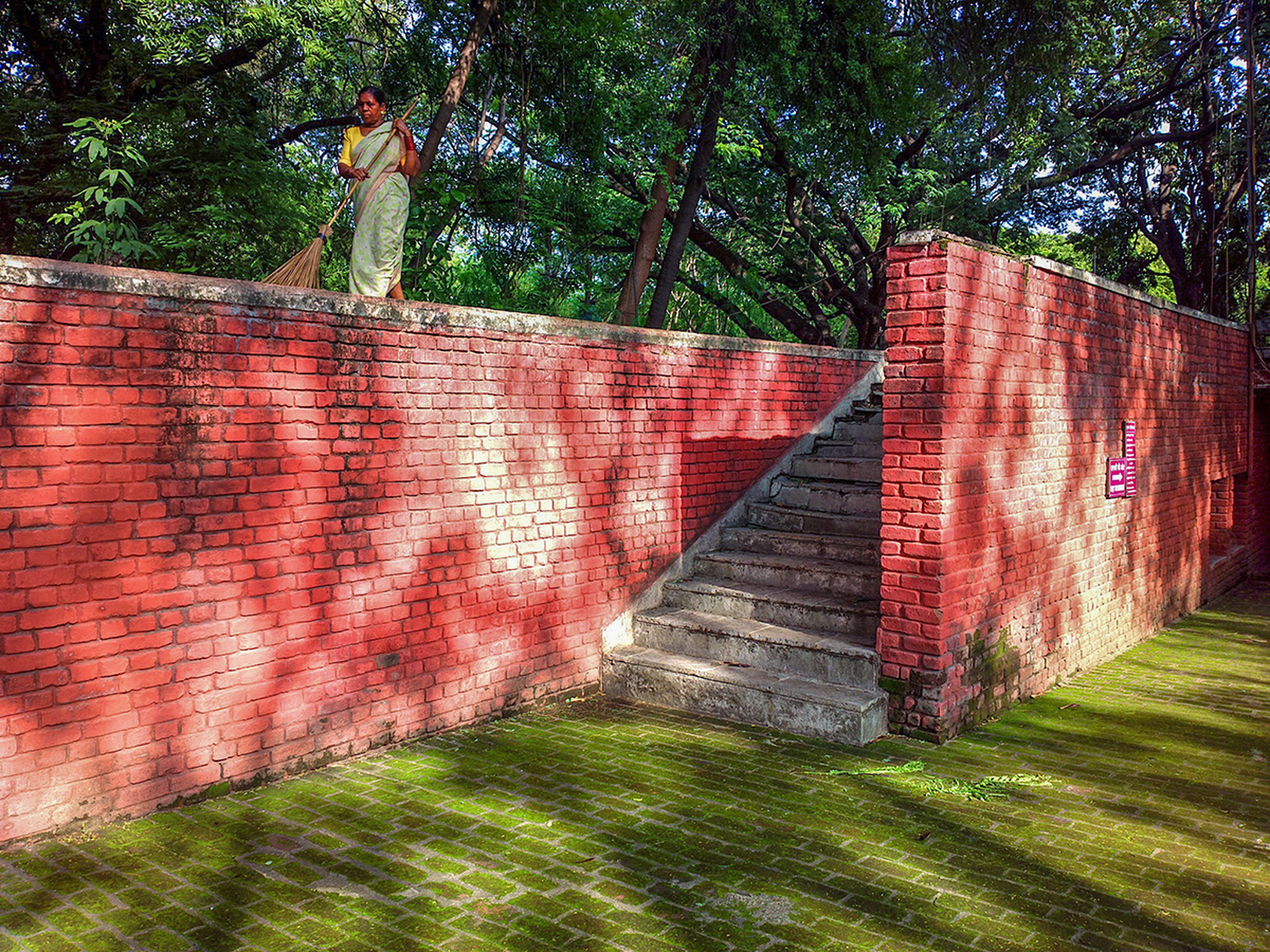 built structure, tree, architecture, building exterior, red, wall - building feature, wood - material, brick wall, growth, house, day, steps, old, grass, outdoors, wooden, weathered, no people, abandoned, green color