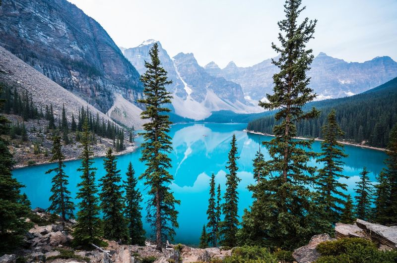 Moraine Lake on an early morning in August 2017, when the Rocky Mountains were smoky from the massive forest fires in BC. Moraine Lake  Banff National Park  Banff Alberta Banff  Lake Louise,Alberta Mountain Scenics - Nature Beauty In Nature Tree Tranquil Scene Plant Tranquility Water Mountain Range Nature Non-urban Scene Lake Day Sky Landscape Idyllic Land Environment No People Outdoors Pine Tree Coniferous Tree Formation Mountain Peak Snowcapped Mountain Smoky Forest Fires Smoke Early Morning Turquoise Water Turquoise Lake