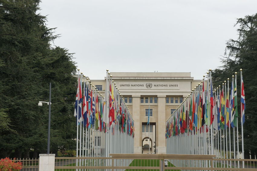 Architecture Building Exterior Country Flags Day Flags Geneva Geneve No People Outdoors Suisse  Tree UN