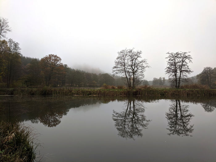 Bad weather overcast grey sky photography. colourless fish pond, autumn forest, trees and reflection