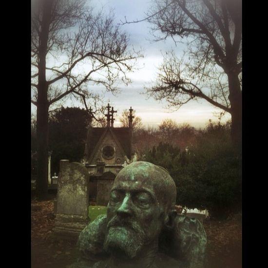 Dans Les Rayons De La Mort