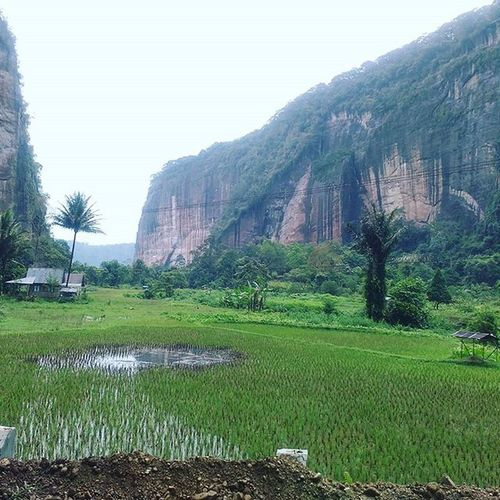 The view Nature IndonesiaILoveThisCountry