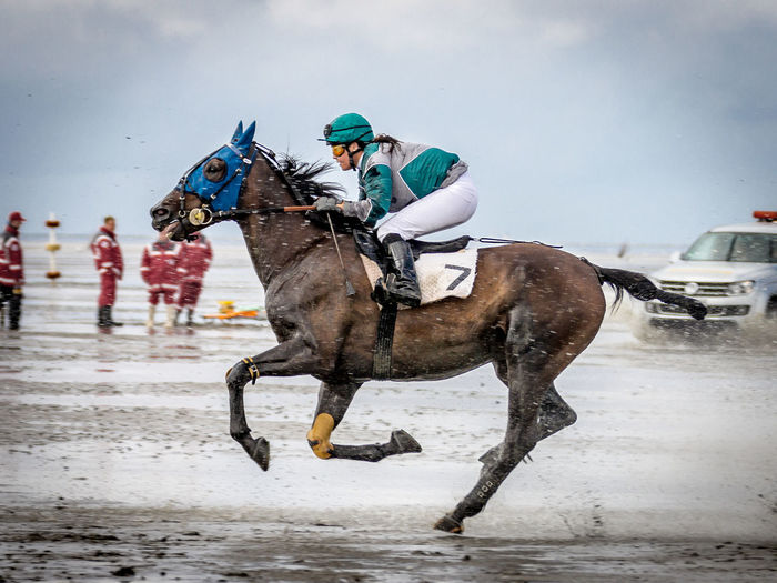 Animal Themes At The Beach Fun Galope Race Horse Horse Racing Outdoors Sports Photography