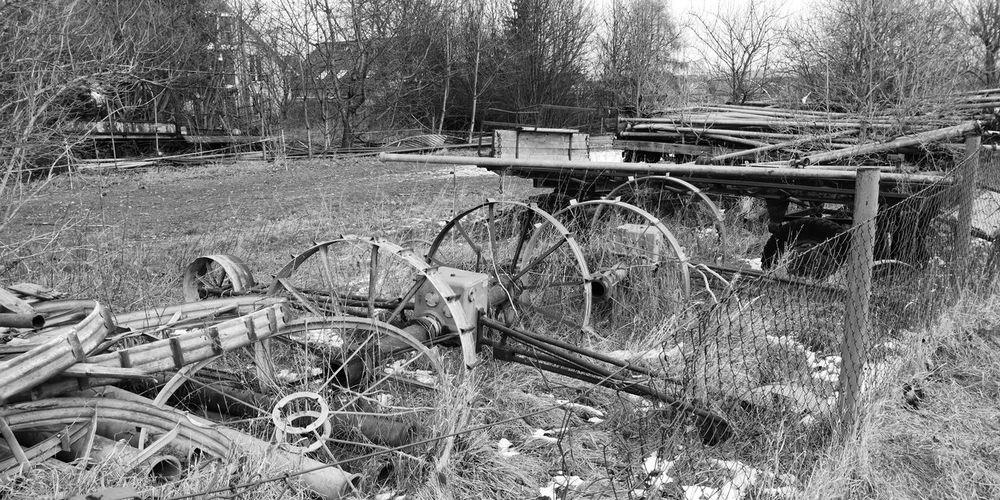 Wiese in Erfurt Wiese  Schwarzweiß Agrar Agriculture Landwirtschaft Landwirtschaftsgerät Wagon Wheel Agricultural Machinery Tractor Agricultural Equipment Ruined