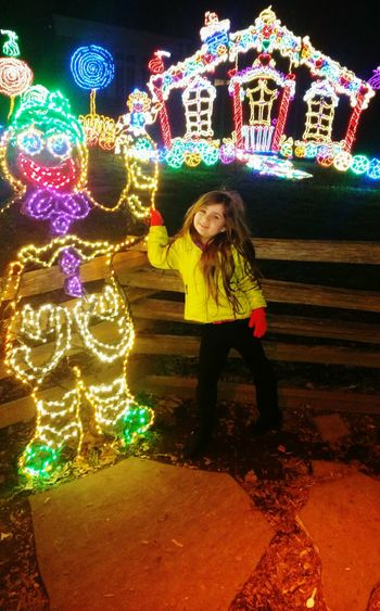 December 2015 Enchanted Garden Of Lights My Girl
