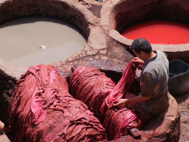 Colour Dyeing Skins, Medina Adult Composition Dyeing Famous Place Fes Full Frame High Angle View Inspecting Leather Production Lether Making A Living Medina Medina De Fez Morocco Old City One Person Outdoor Photography Red Colour Sheepskin Skins Tannery Tourist Attraction  Tourist Destination Worker Working