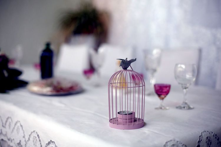 Close-up of bird cage on table