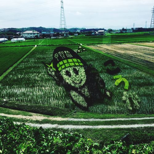 Green Color Growth Agriculture Field Nature Grass Sky Tree Rural Scene Plant Beauty In Nature Tranquility Tranquil Scene Outdoors Day No People Landscape Scenics 田んぼ Art 忍者 甲賀 滋賀 Art Is Everywhere