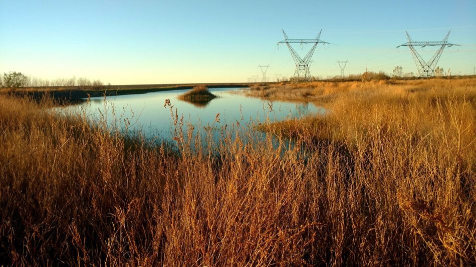 Water Sunset No People Sky Outdoors Taking Photos Art Is Everywhere Picture Of The Day EyeEmArgentina The Great Outdoors - 2017 EyeEm Awards PuertoMadryn POWERSYSTEM Eyem Nature Powertransmissionlines Day Nature Horizon Over Water The Week On EyeEm Perspectives On Nature Capture Tomorrow