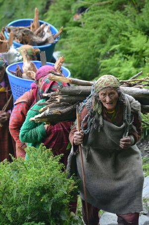 Outdoors People Working Day Only Women Nature Green Color Nature Plant Group Of People Friendship Human Face Tribal Women