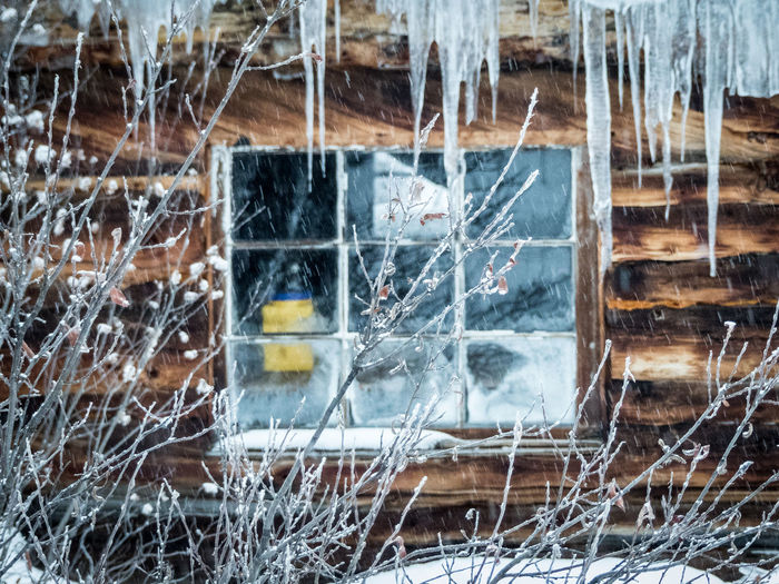 freezing cold mountain hut window: clarityBuilding Exterior Built Structure Bush Canada Cold Cold Temperature Cold Winter ❄⛄ Day Frozen Icicles Mountain Hut No People Snow Twigs And Branches Wilderness Adventure Wilderness Area Window Winter Winter Wonderland Wooden Cabin Wooden Hut Yukon Territory